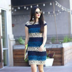 Ann Taylor Lace Dress